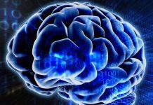 Como Hackear de Forma Positiva o Cérebro de Seus Funcionários