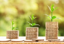 Serasa Score Empreendedor Pode Ajudar A Sua Empresa